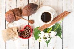 Kakaowy strąk, Kakaowe fasole, kakaowy proszek, kakaowy filiżanka cynamon na whit Obrazy Stock