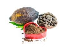 Kakaowy strąk, Kakaowe fasole, kakaowy proszek na białym tle Obrazy Royalty Free