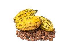 Kakaowy strąk, Kakaowe fasole, kakaowy proszek na białym tle Zdjęcie Stock
