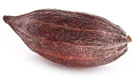 Kakaowy strąk obrazy royalty free
