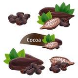 Kakaowy strąk w nutshell z liśćmi ustawiającymi Zdjęcia Royalty Free