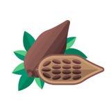 Kakaowych fasoli i liści wektoru ilustracja Superfood cacao ikona ilustracji