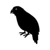 Kakapo bird icon Royalty Free Stock Photography