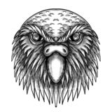 Kakapo Owl Parrot Head Tattoo stock illustrationer