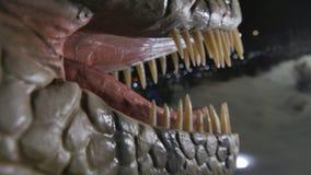 Kaken van de close-up de open enge dinosaurus met scherpe hoektanden stock videobeelden