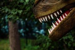 Kaken van een dinosaurus in bos stock foto's