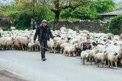 Kakheti Photos libres de droits