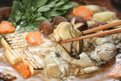 Kaki dotenabe , oyster cooked in a pot. At the table , japanese food Royalty Free Stock Image