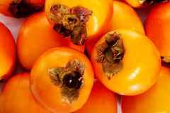Kaki fruits up front view. Stock Photography