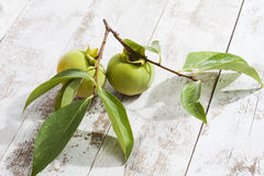 Kaki fruits on white wood Stock Photo