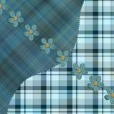 Kakipflaumenbaum-blaue Plaidmuster Lizenzfreie Stockfotografie