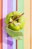 Kakis, Diospyros kaki, on colored background Royalty Free Stock Images