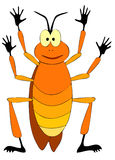Kakkerlak Stock Afbeelding