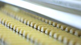 Kakor för konfektfabrik för tillverkning av stock video