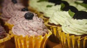 Kakor med fruktyoghurt och blåbärcloseupen Royaltyfria Bilder