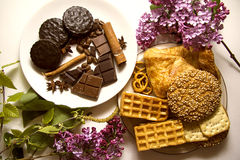 Kakor och choklad 04 Arkivfoto