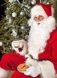 Kakor och mjölkar för santa Royaltyfri Foto