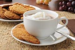 Kakor och varm choklad royaltyfria foton