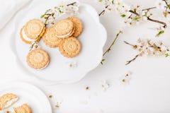 Kakor på den vita plattan med blomningplommonträdet Royaltyfri Bild