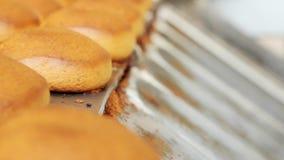 Kakor på produktionslinje på bagerifabriken Bageriproduktion lager videofilmer