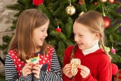 kakor som äter främre flickatree två Arkivfoto