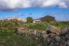 Kakteen und Bergblick-La-Oliva Fuerteventura Las Palmas Canary-Inseln Spanien Lizenzfreies Stockbild