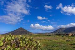 Kakteen und Bergblick-La-Oliva Fuerteventura Las Palmas Canary-Inseln Spanien Stockfotos