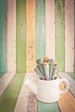 Kaktuns blommar i vas på retro tappningbakgrund Fotografering för Bildbyråer