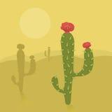 Kaktusöken Royaltyfri Bild