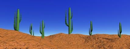 kaktusökenliggande royaltyfri foto
