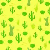 Kaktus, Lizenzfreie Stockfotos
