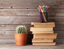Kaktus, alte Bücher und bunte Bleistifte Lizenzfreies Stockfoto