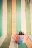 Kaktus blüht im Vase auf Retro- Weinlesehintergrund Lizenzfreie Stockfotos