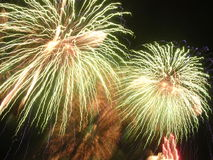 ?Kaktus-Blume?, fantasiereiches Feuerwerk. Lizenzfreies Stockfoto