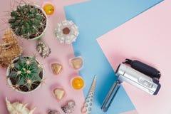 Kaktus, camcorder, sötsaker och snäckskal för bästa sikt två liten grön på rosa och blå bakgrund med kopieringsutrymme fotografering för bildbyråer