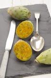 Kaktus czupirzy rżniętego †‹â€ ‹z nożem i łyżką Obrazy Stock