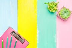Kaktus in der Draufsicht des Topfes und des rosa Klemmbrettes über die bunten hölzernen Hintergründe mit Kopienraum Stockfotografie