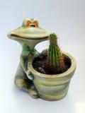 Kaktus in einem Potenziometer Stockbild