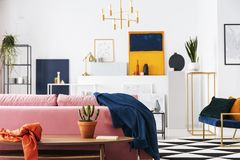 Kaktus i kruka på trätabellen i modern vardagsrumlägenhet av konstsamlaren, lott av målningar på väggen arkivbild