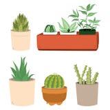 Kaktus i krukauppsättning stock illustrationer
