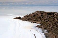 Kaktus-Insel, Salar de Uyuni Lizenzfreies Stockbild