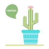 kaktus isolerad kruka Symbol av kaktusblomman Spring är här igen Royaltyfri Foto
