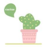 kaktus isolerad kruka Symbol av kaktusblomman Spring är här igen Royaltyfri Fotografi