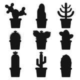 kaktus isolerad kruka Symbol av kaktusblomman Spring är här igen Arkivfoton
