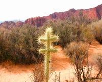 kaktus krzyż Zdjęcie Stock