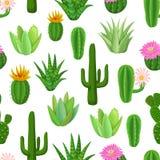 Kaktus och suckulent sömlös modell Arkivbild