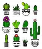 Kaktus- och suckulentväxter i krukor Royaltyfria Bilder