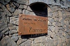 Kaktus ogrodowy Jardin De Kaktus w Lanzarote wyspie Obraz Royalty Free