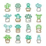 Kaktus suckulent växtsymbol Royaltyfri Fotografi