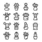 Kaktus suckulent växtsymbol Royaltyfria Foton